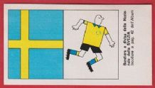 Sweden Badge and Kit